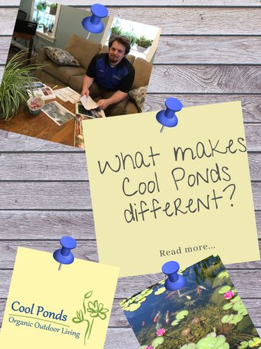 The Cool Ponds Difference