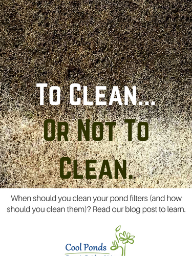 How Often To Clean Filters