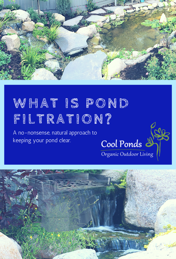 What is pond filtration?