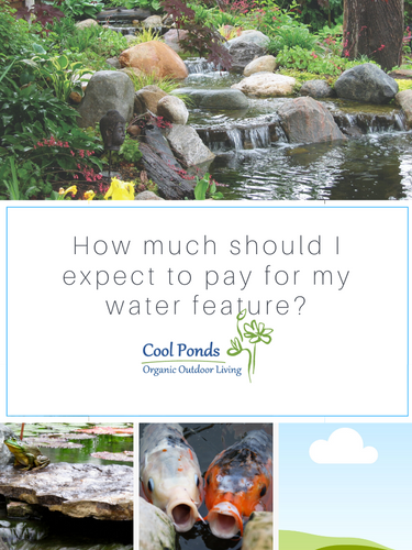 How much should I expect to pay for my water feature?