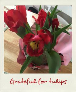 Grateful for tulips