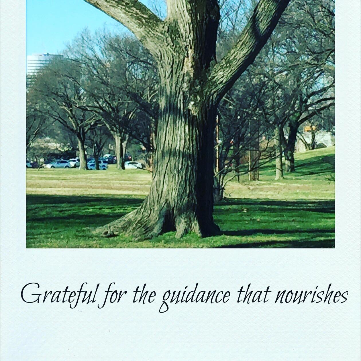 Grateful for being nourished