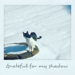 Grateful for my shadow
