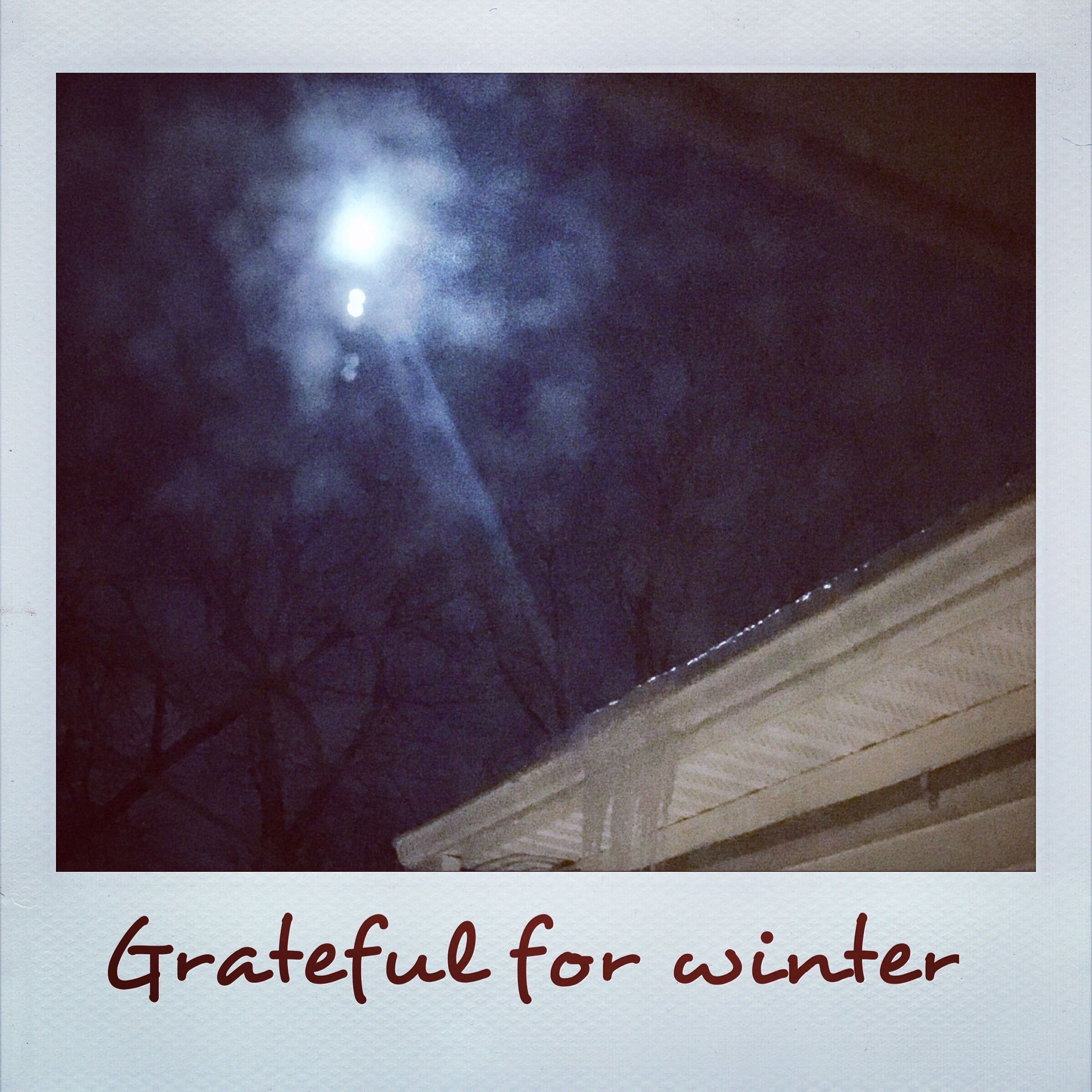 Grateful for Winter