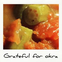 Grateful for okra