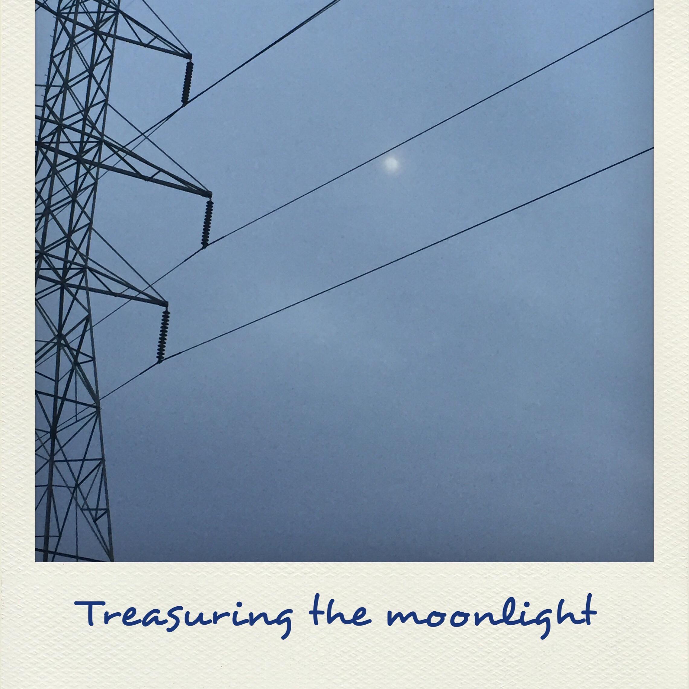 Treasuring Moonlight