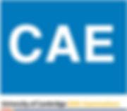 CAE (Certificate in Advanced English)