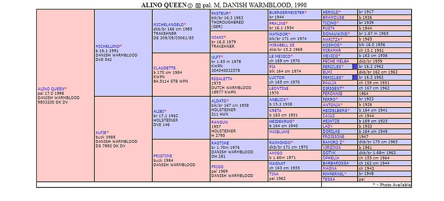 Alino Queen pedigree.JPG