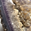 Thumbnail: Naural Amethyst in Agate Geode with golden quartz points from Madagascar