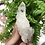 Thumbnail: Double Terminated Clear Sugar Quartz pointy Cluster