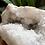 Thumbnail: 1KG Large White Quartz Geode from Morocco