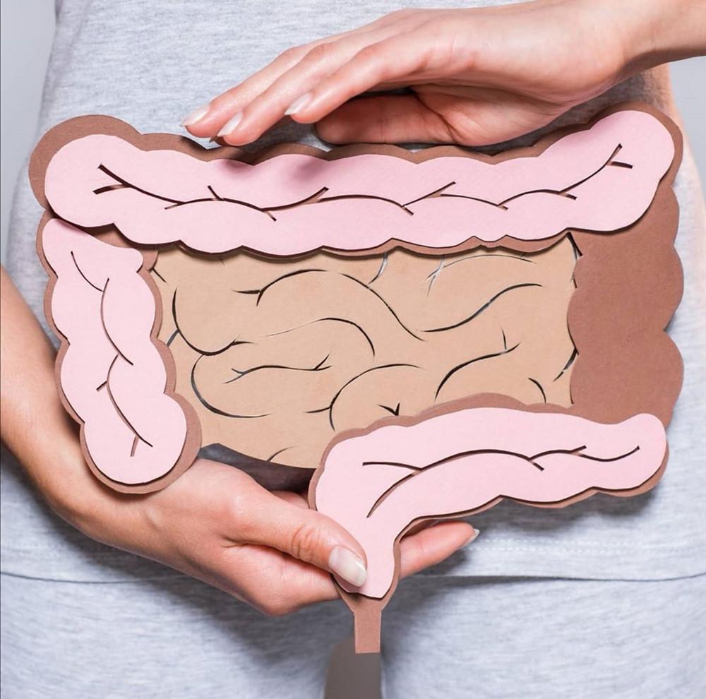 les intestins,flore intestinale, comment détécter une flore intestinale désequilibré