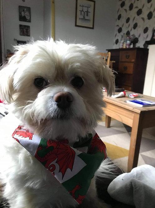 Welsh dragon dog bandana SMALL