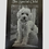 """Thumbnail: Welsh Slate 10"""" x 8"""" Your Photo Engraved"""