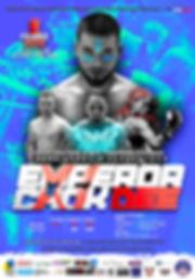 ECD20-affiche.jpg
