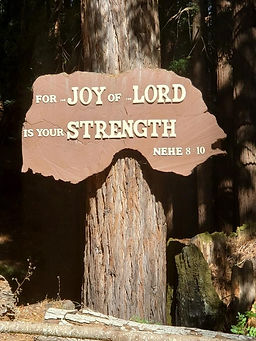 The Joy of the Lord.jpg
