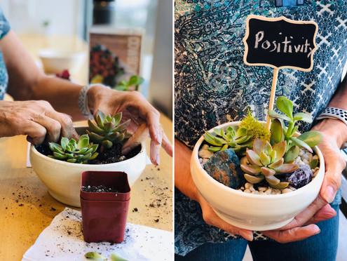 How to Create a Crystal & Succulent Energy Garden