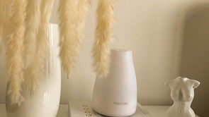 How To Avoid Triggering Allergies In Your Home