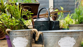 Home: Six Simple Tips To Keep Your Garden Secure This Autumn