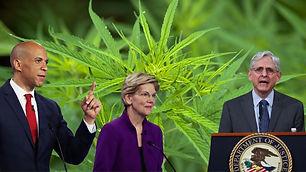Senators Ask to Deschedule Weed