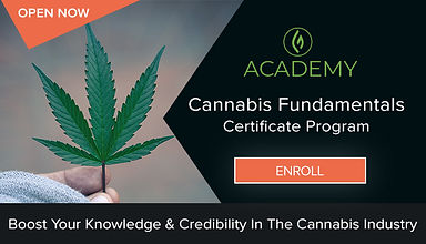 cannabis-certificate-program.jpeg