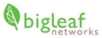 big-leaf-networks.png
