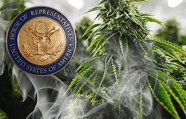 US House Cannabis Legalization News