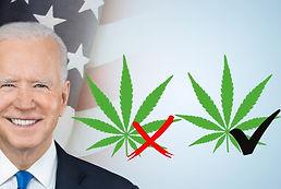Biden Supports Federal Legalization of Marijuana