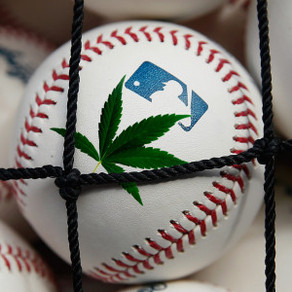 Major League breakthrough! Major League Baseball Treats Weed like Alcohol!
