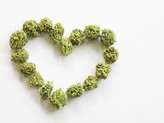 cannabis heart shape