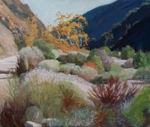 Trabuco Canyon