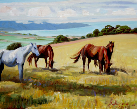 Maui Horses