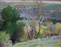 Trabuco Canyon Road