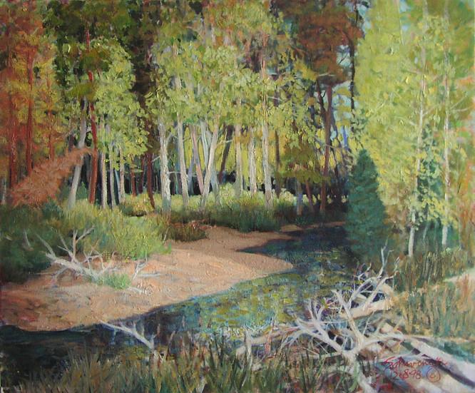 Quiet Place Alturas Creek