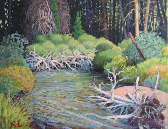 Beaver Pond - Beaver Creek