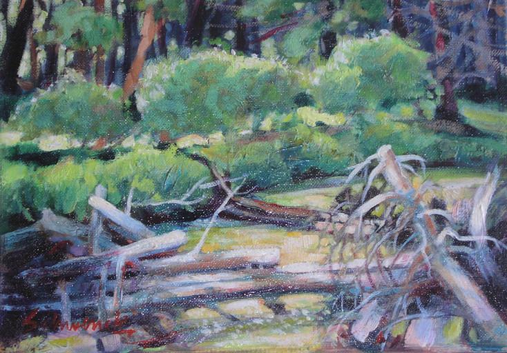 Down Fall - Beaver Creek