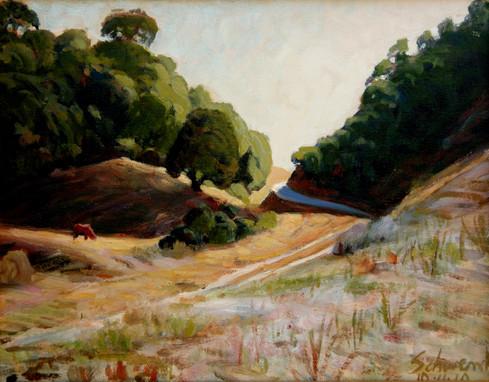 Path off Foxen Canyon