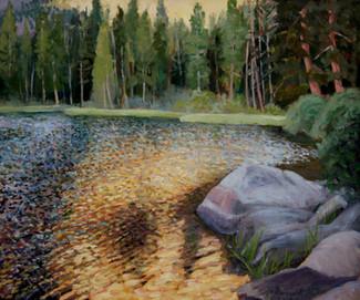 Virginia Lake Reflection