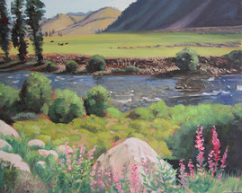 Salmon River - Stanley
