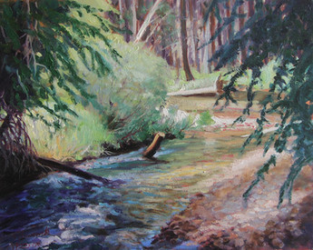 Patch of Light Beaver Creek