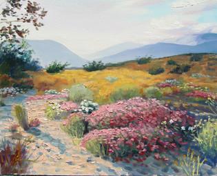 Desert Gold - Anza Borrego