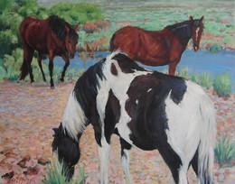 Horse Trinity