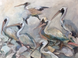 pelicansworkingcopy