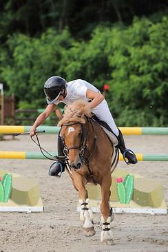 Equestrian Amp Sport Mysite