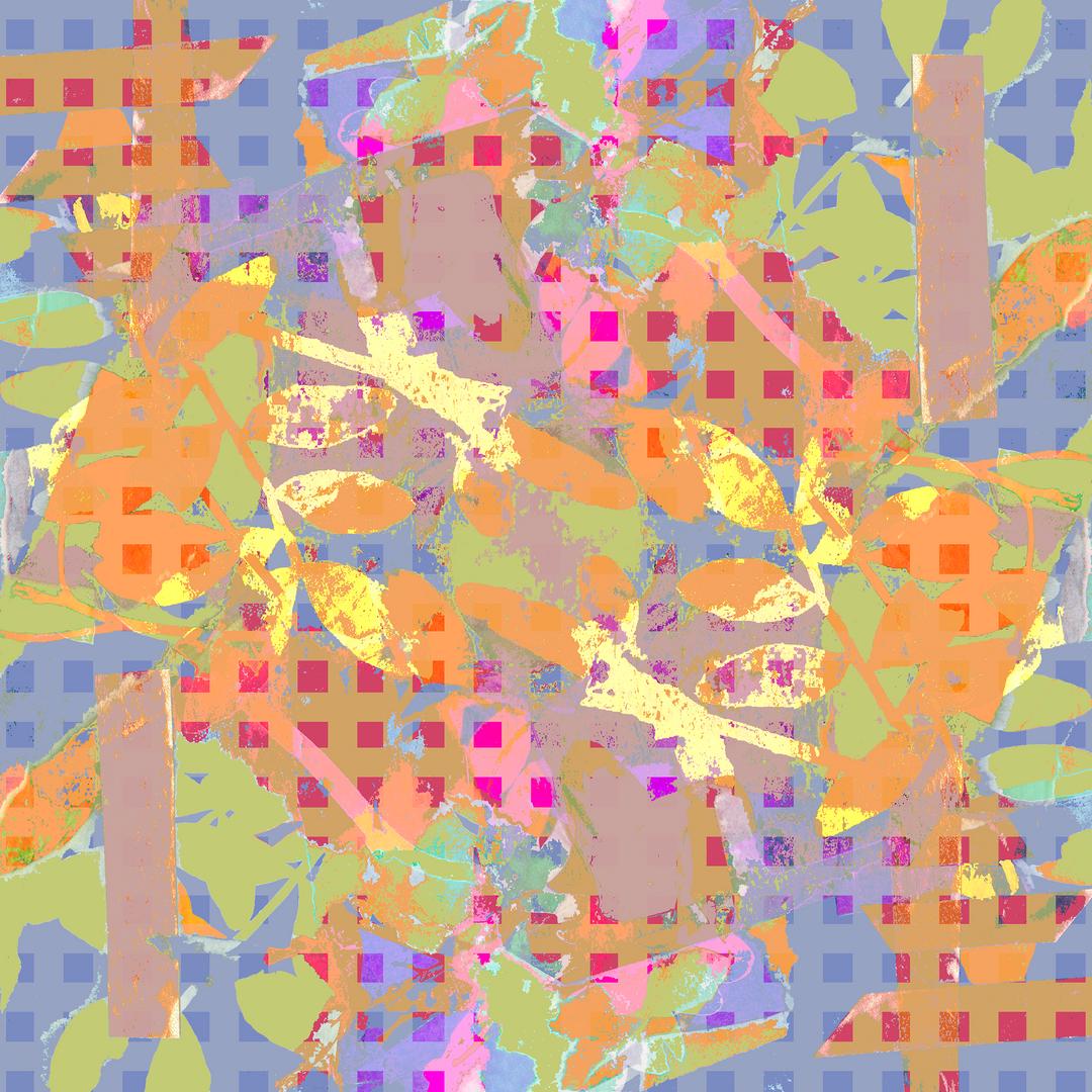 cyanotype 2 squares