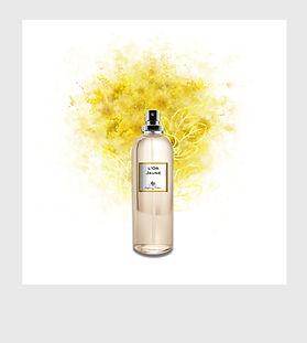 Visu Polaroid Eau de parfum 2.jpg