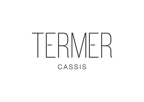 Logo TERMER-01.jpg