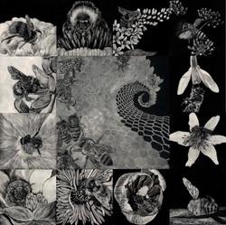 ChelonidaeArtistry_Catalog
