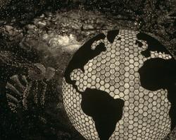 20656 Tara Merkt Globe_web