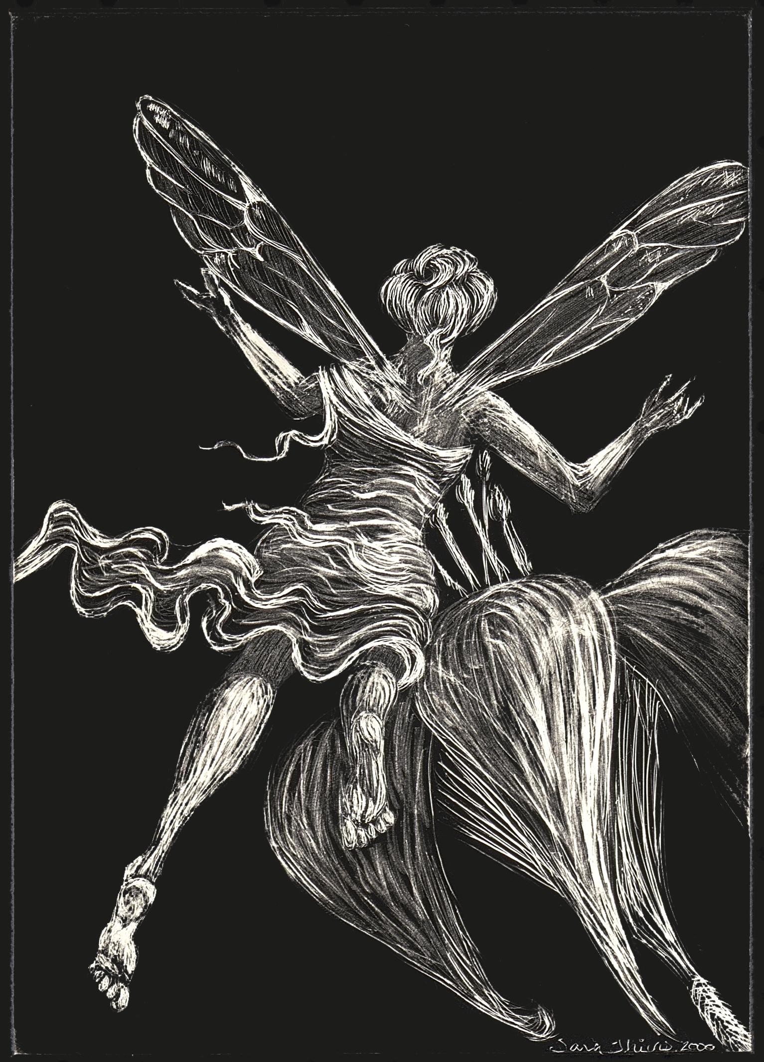Fairy(scan)